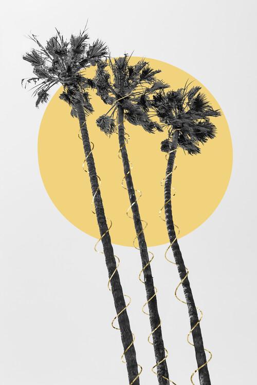 Exklusiva konstfoton Palm Trees In The Sun