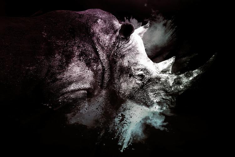 Exklusiva konstfoton The Rhino