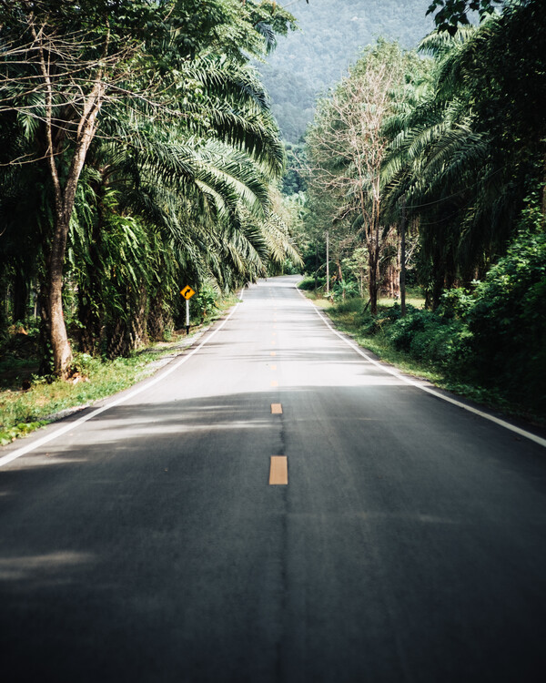 Exkluzív Művész Fotók The Good Road