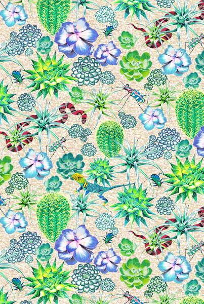 Vászonkép Les Jardins Majorelle - Succulents