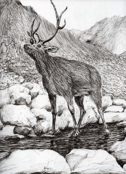 Stag, 2011, Festmény reprodukció