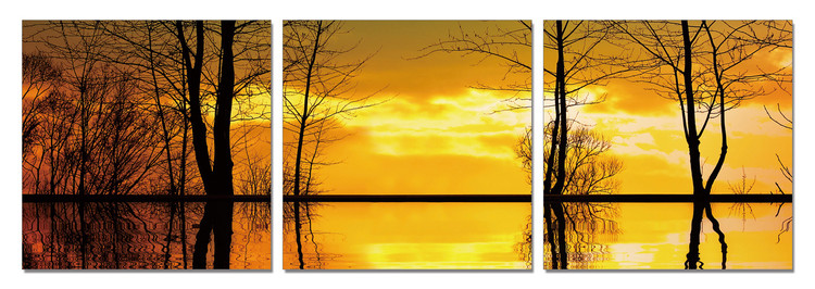 Tree Silhouettes - Calm Water Modern kép