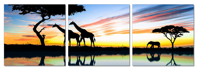 Wild Nature - Sunrise in Africa modern festmény