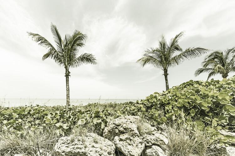 Captiva Island | Vintage Fotobehang