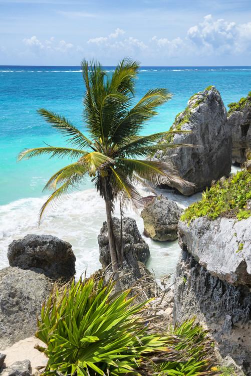 Caribbean Coastline Fotobehang