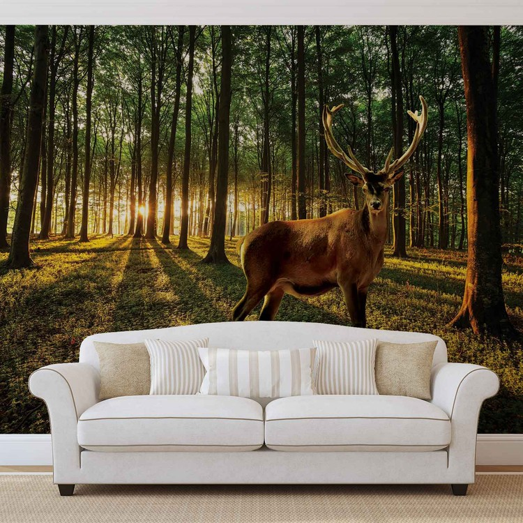 Deer Forest Trees Nature Fotobehang