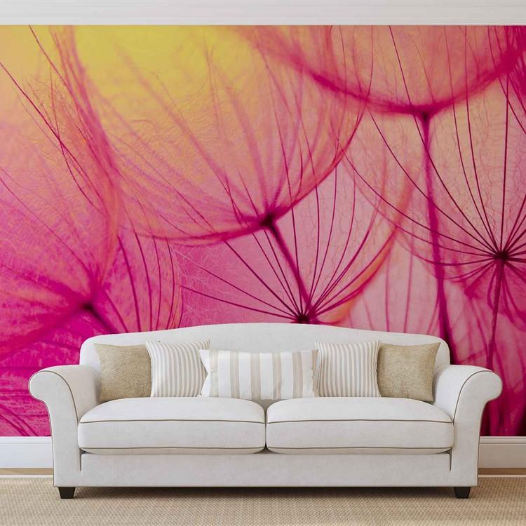 Flower Dandelion Fotobehang