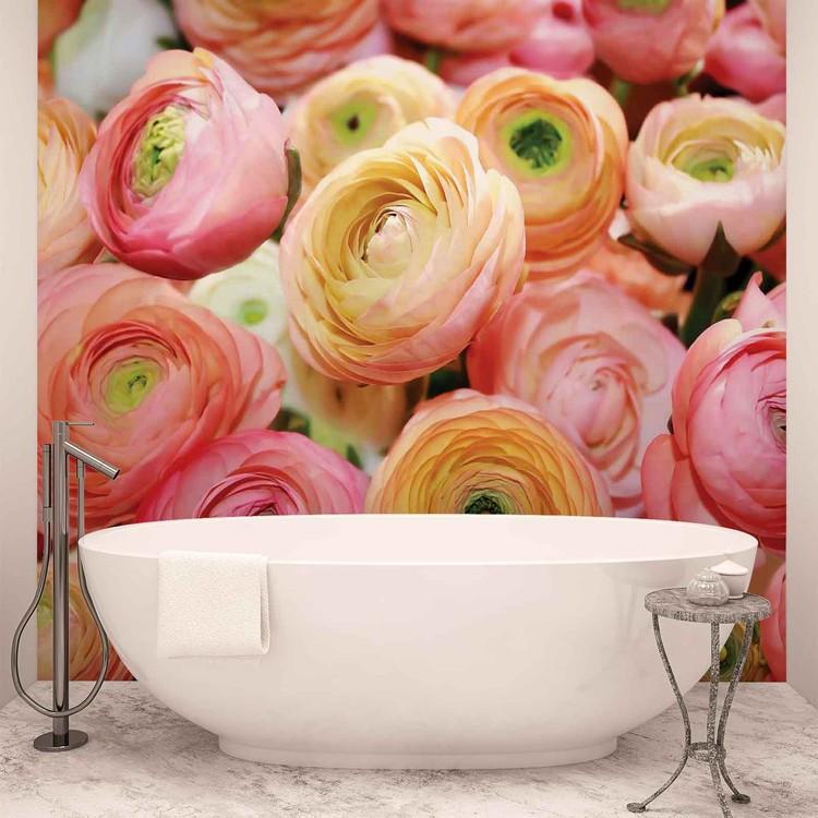 Flowers Peonies Colours Fotobehang