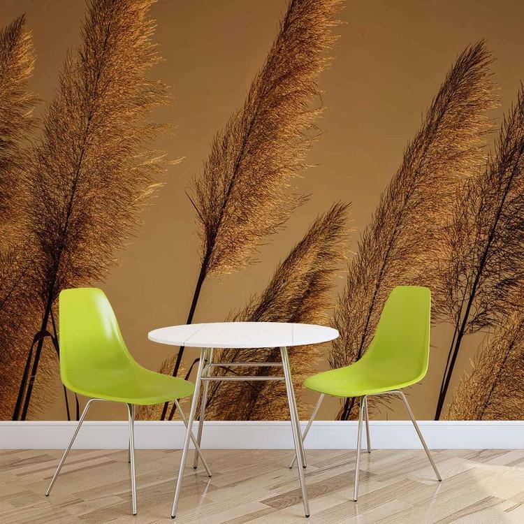 Grasses Blowing In The Wind Fotobehang
