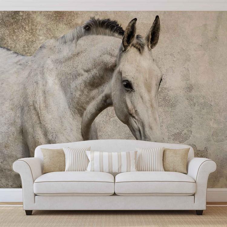 Horse Pony Fotobehang