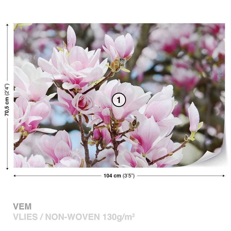 Magnolia Flowers Fotobehang