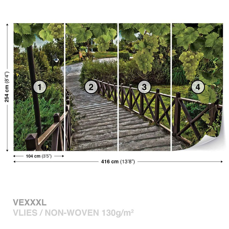 Path Grapes Nature Fotobehang