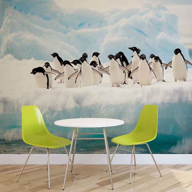 Penguins Fotobehang