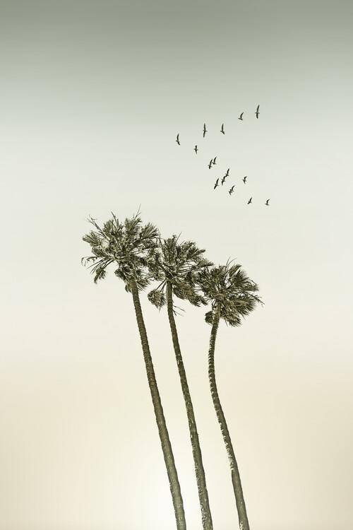Vintage palm trees at sunset Fotobehang