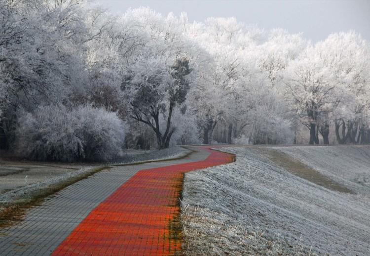 Winter Afternoon Fotobehang