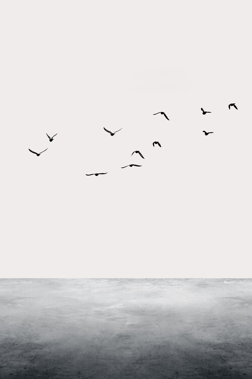 Fotografia artystyczna The Ocean