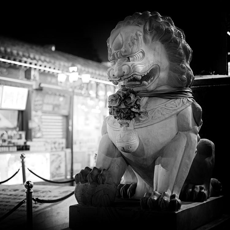 Fotografia artystyczna China 10MKm2 Collection - Lion Stands Guard