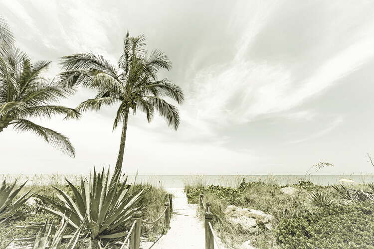 Fotografia d'arte Alone at the beach | Vintage