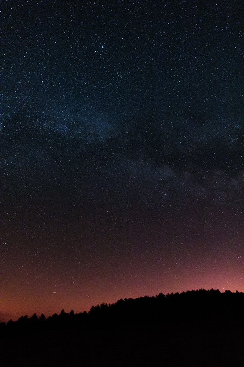 Fotografia d'arte Night photos of the Milky Way with stars and trees.