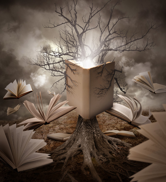 Fotografia d'arte Old Tree Reading Story Book