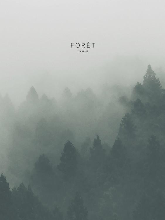 Fotografia d'arte foret2