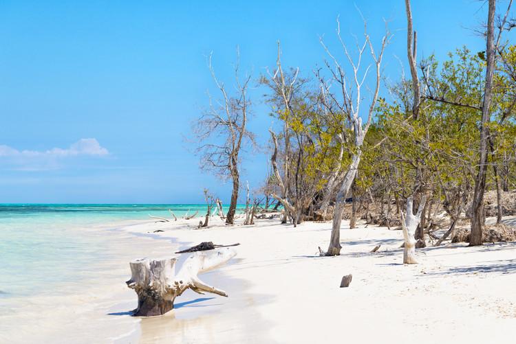 Fotografia d'arte White Sand Beach