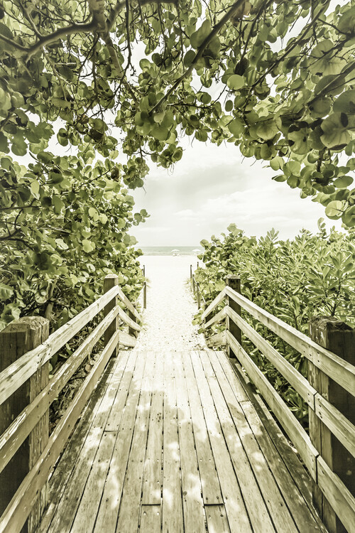 Fotografii artistice Bridge to the beach with mangroves | Vintage