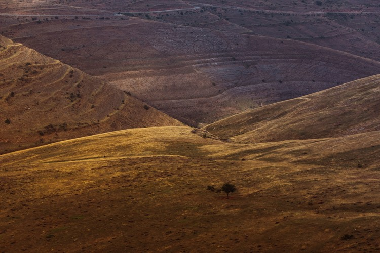 Fotografii artistice Last sun rays over the valley 2