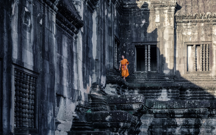 Fotografii artistice The young monk