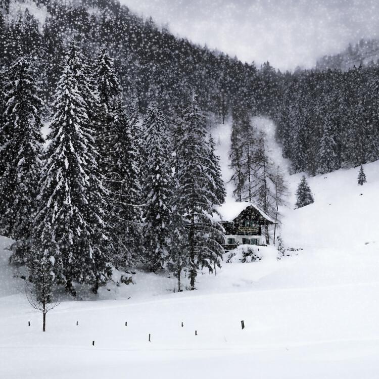 Ekskluzivna fotografska umetnost Bavarian Winters Tale IX