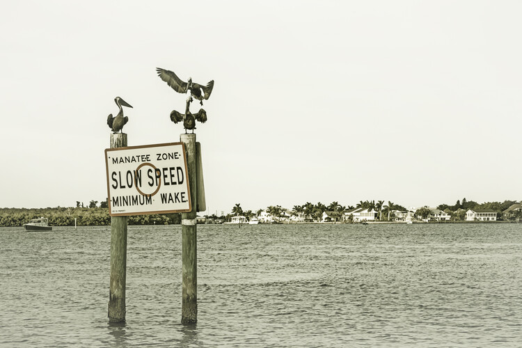 Ekskluzivna fotografska umetnost Coastal View from Fort Myers Beach   Vintage