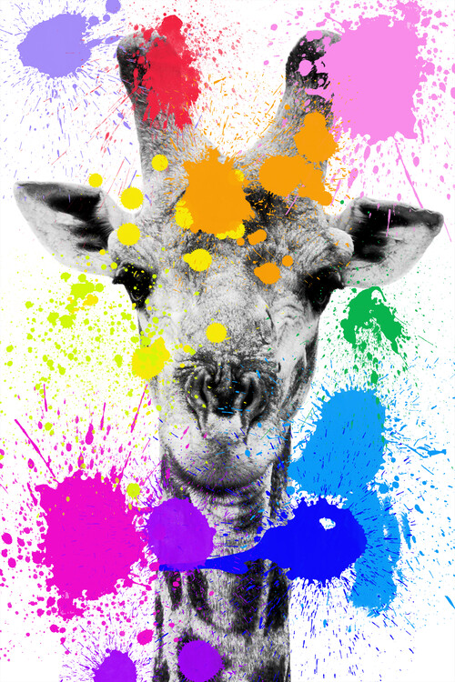Ekskluzivna fotografska umetnost Giraffe