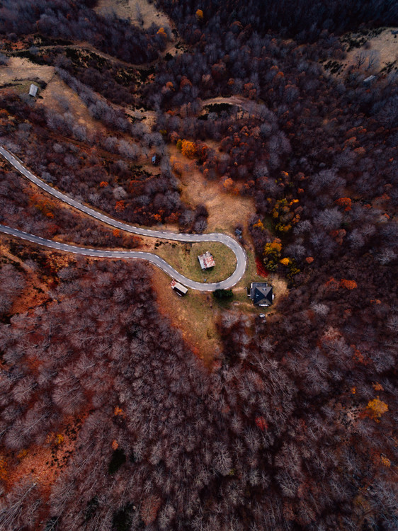 Ekskluzivna fotografska umetnost Mountain road between autumn trees