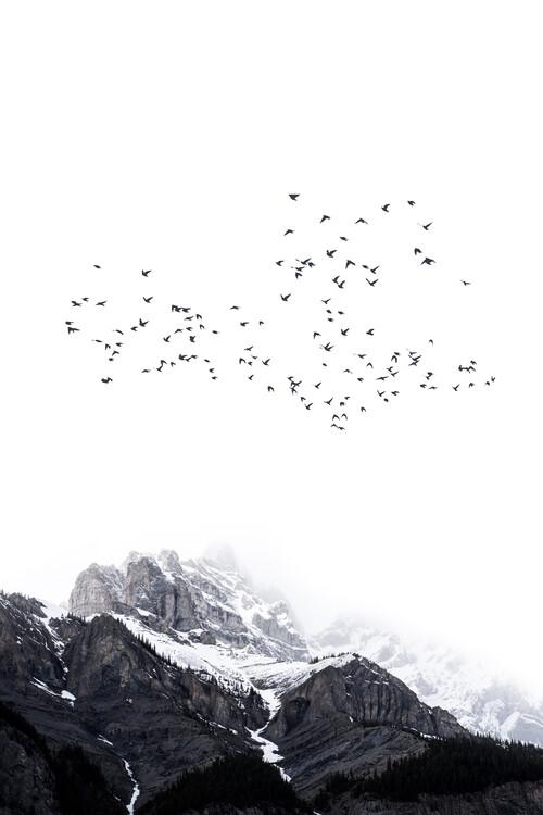 Ekskluzivna fotografska umetnost The Mountains