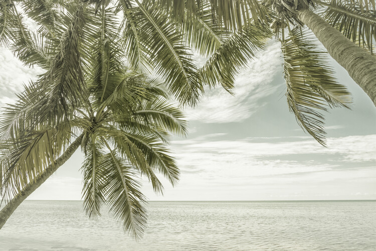 Ekskluzivna fotografska umetnost FLORIDA Vintage Oceanview
