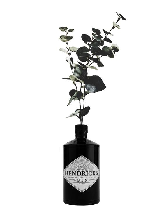 Ekskluzivna fotografska umetnost hendricks