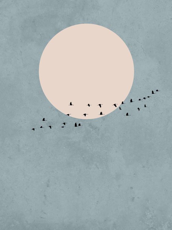 Ekskluzivna fotografska umetnost moonbird1