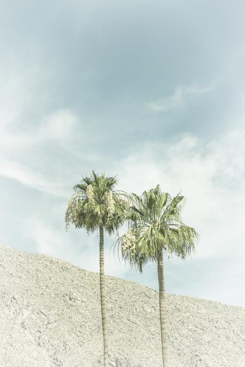 Ekskluzivna fotografska umetnost Palm Trees in the desert   Vintage