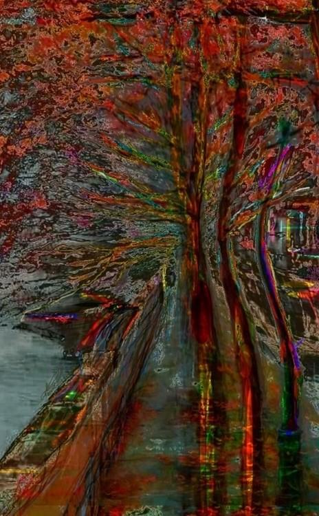 Ekskluzivna fotografska umetnost RIVEROSSO