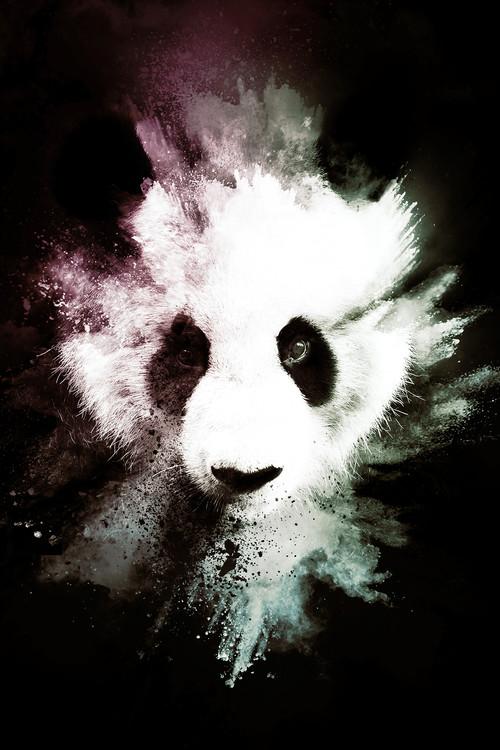 Ekskluzivna fotografska umetnost The Panda