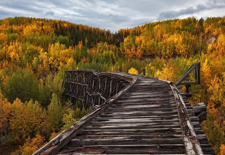 Fotomural Bridge To Nowhere