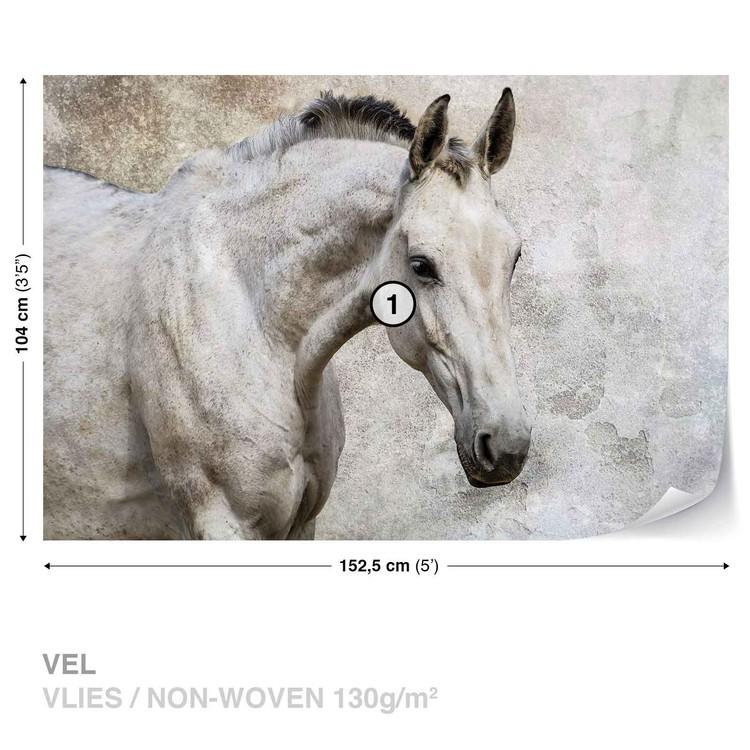 Fotomural Caballo Pony