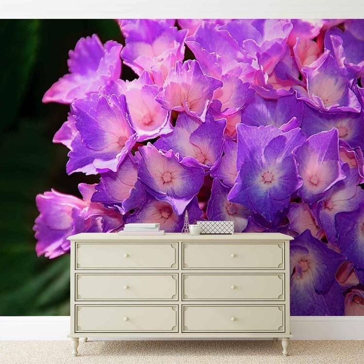 Fotomural  Flores de Hydrangea Purple