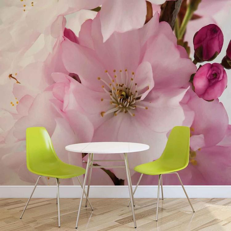 Fotomurale Flores Flores Naturaleza Rosa