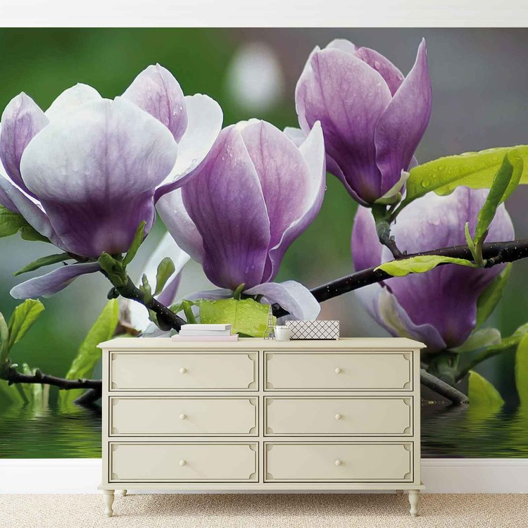 Fotomurale Flowers Magnolia Water