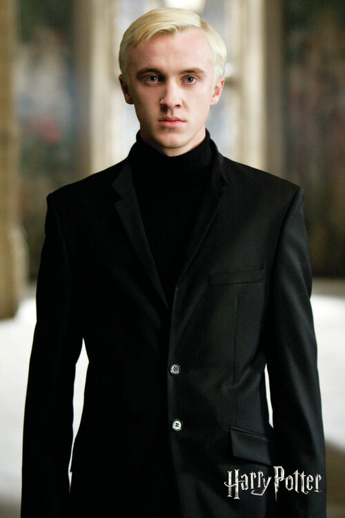 Fotomural Harry Potter - Draco Malfoy