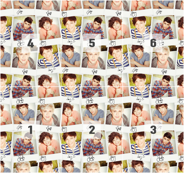 Fotomural  One Direction - Collage