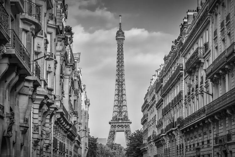 Fotomural Parisian Flair