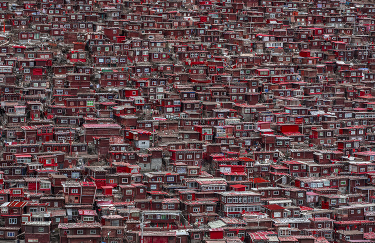 Fotomural Red houses
