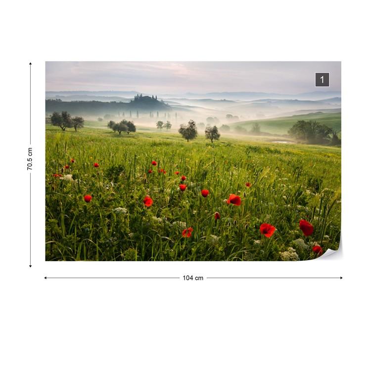 Fotomural Tuscan Spring